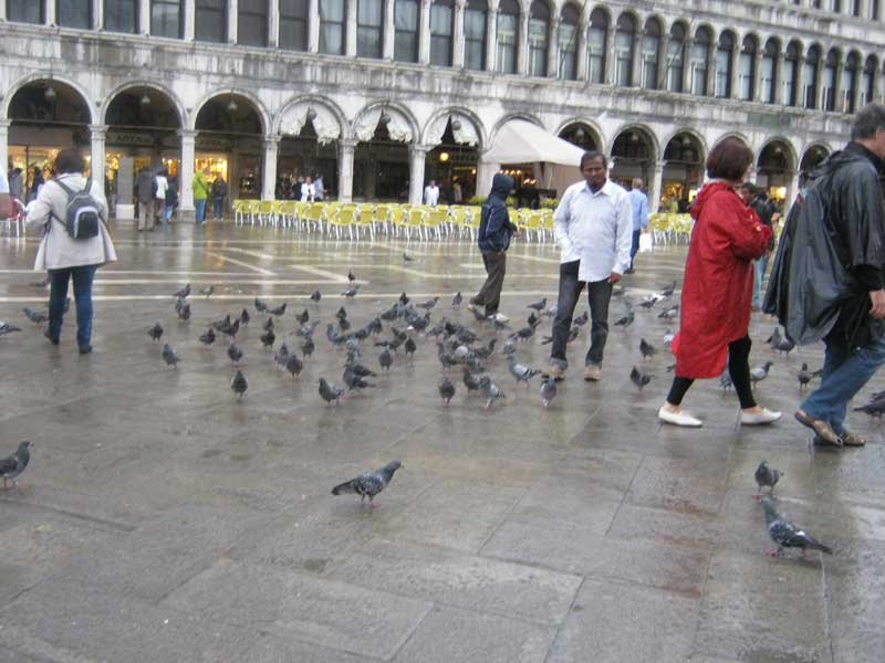 میدان سن مارکو ونیز ایتالیا-ارزان سفر