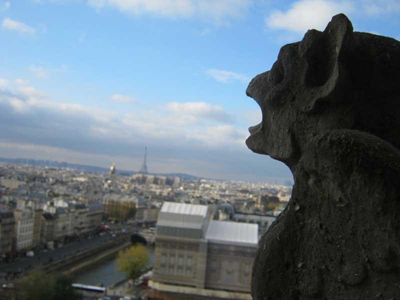 نمایی دیگر از شهر پاریس از بالای کلیسای نوتردام