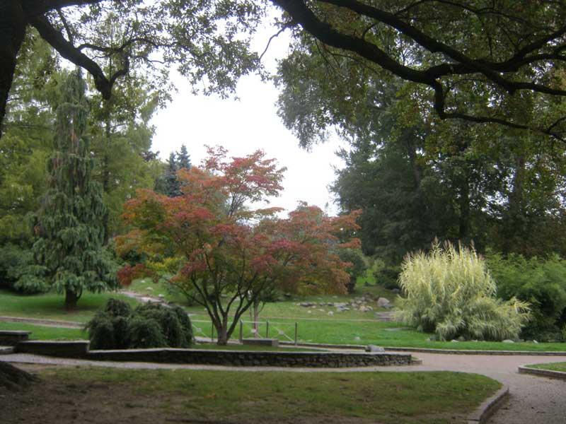 منظره ای از پارک کنار رودخانه پو در تورین