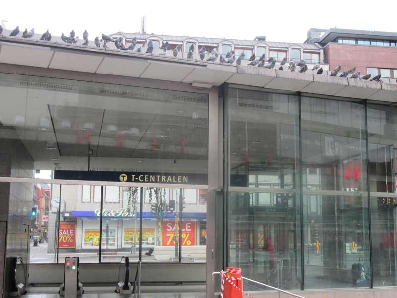ایستگاه مترو T-CENTRALEN در کنار میدان سرگل استکهلم